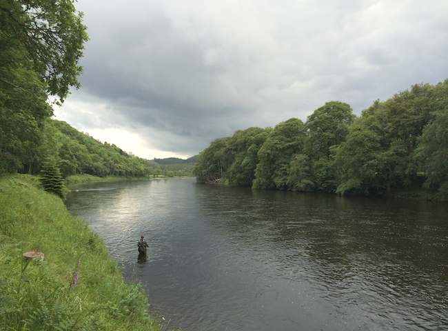 Salmon Fishing On The Rivers Of Scotland